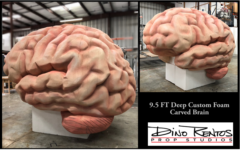 Giant Foam Human Brain Custom Made Scenic Sculpture Props and Displays